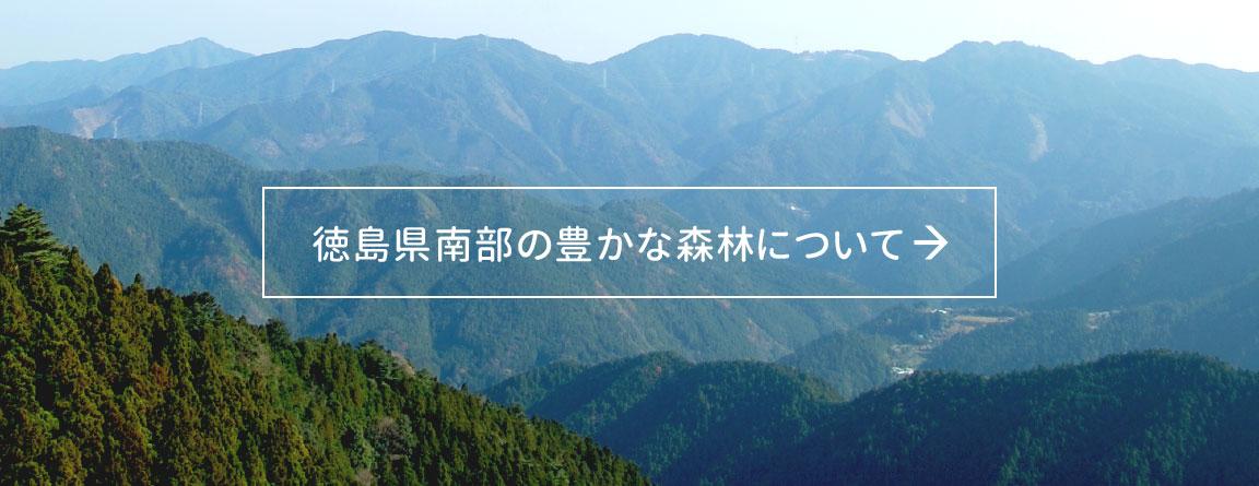 徳島県南部の豊かな森林について